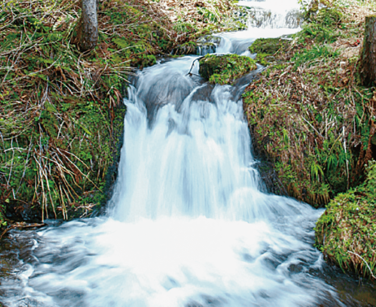鍛冶台いこいの森 不動の滝
